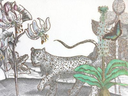 A5 Tigre Des Fleurs CARD5