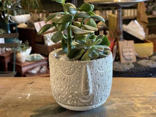 Succulent Duo Small Concret Face Pot