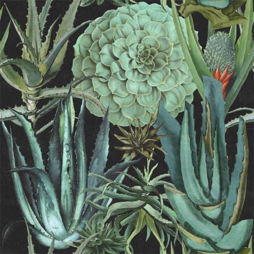 Mind The Gap Wallpaper Succulentus Anthracite