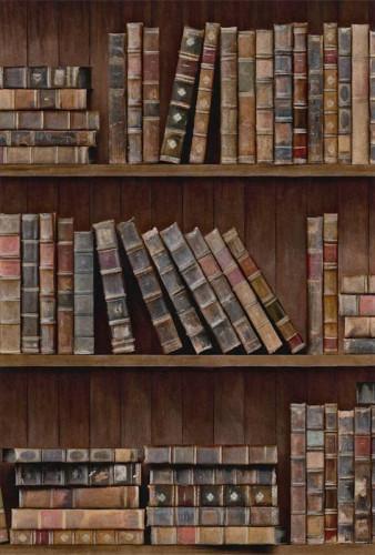 Mind the Gap Book Shelves