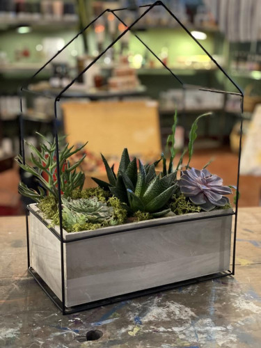 Large Metal/Wood Frame Succulent House