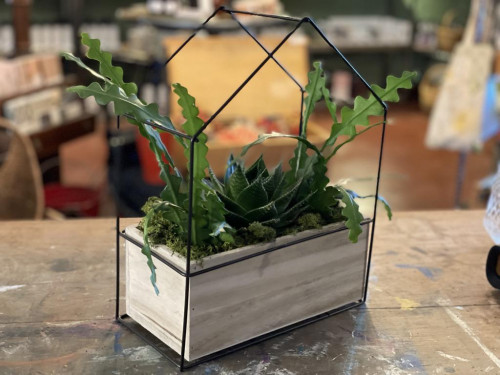 Medium Metal/Wood House Succulent