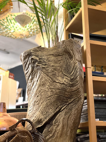 Butterfly Palm in Recycled Tree Trunk Planter
