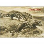 Carpe Diem Catalogue