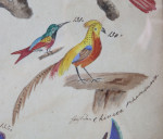 A pair of late 18th century watercolours