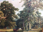 Extensive landscape in the New Forest, Hampshire