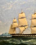 English ship in an Ice field, circa 1860