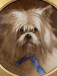 Victorian Portrait of a toy or lap dog