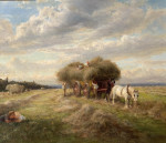 Summer Time Harvest