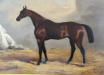 Nutwith, St Leger Winner 1843