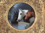 Farm Animals and Horses heads