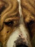 English Victorian dog portrait of a St.Bernard called Monarque.