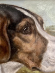 19th century English portrtait of a fox hound