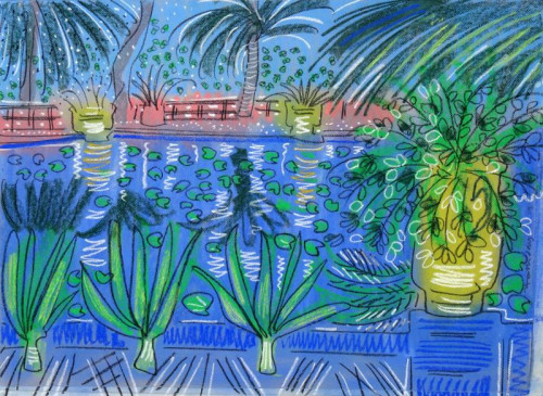 Aloes and Pots at Jardin Majorelle