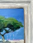 Umbrella Pines, Antibes