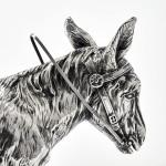 Edwardian silver donkey jug