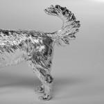 Silver springer spaniel