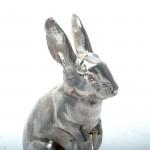 Silver model rabbit