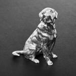 Silver sitting labrador