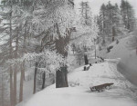Winter Sports in Switzerland, Ski, Scating Tobogganing and Ice Hockey Book