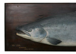 Fochaber Carved Salmon