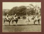 Polo Photograph