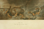 Snaffles WWI Military Print, That Far, Far Away Echo
