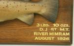 Rowland Ward Trophy Fish Model