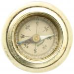 Compass Walking Stick