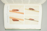 Fishing Book, Anglers Entomology
