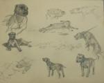 Michael Lyne Sketch