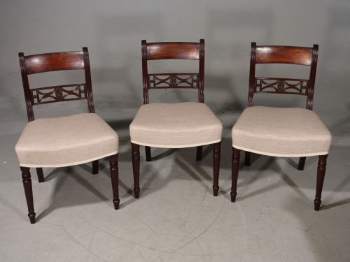 An Attractive Set of 3 Regency Period Mahogany Framed Chairs